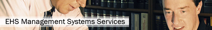 EHS Management Systems Services